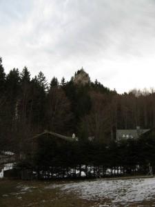 RiedersteinBaumgartenschneid_1
