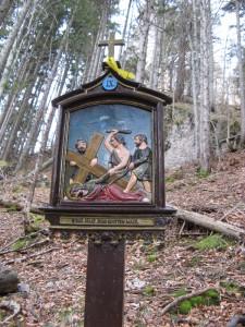 RiedersteinBaumgartenschneid_2