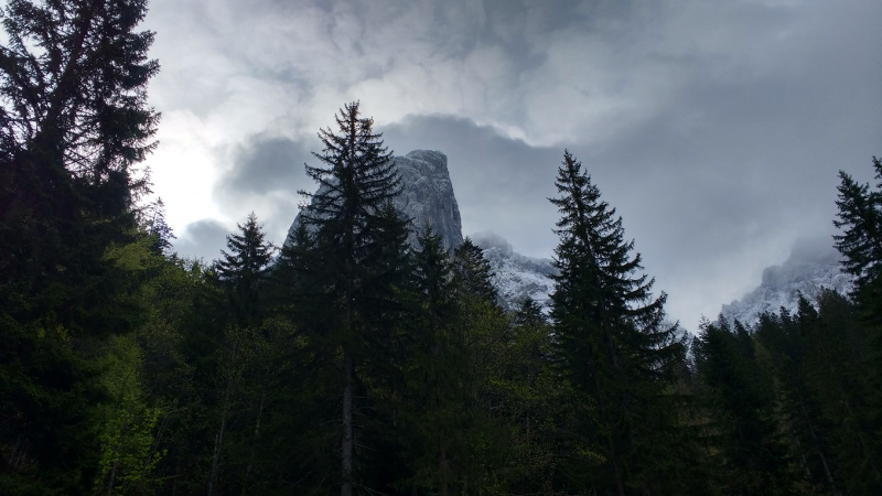 KaisergebirgeAbstieg_11