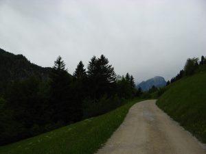 KaisergebirgeAbstieg_18