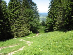 Klettersteig Am Ettaler Mandl : Über die schartenköpfe auf den laber 1686m und über einen kleinen